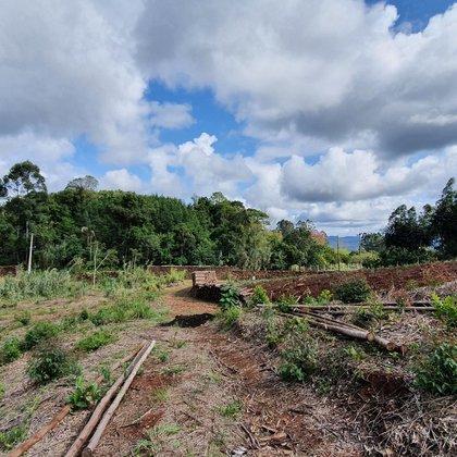 Área de terras com fácil acesso em Picada Café, na serra gaúcha