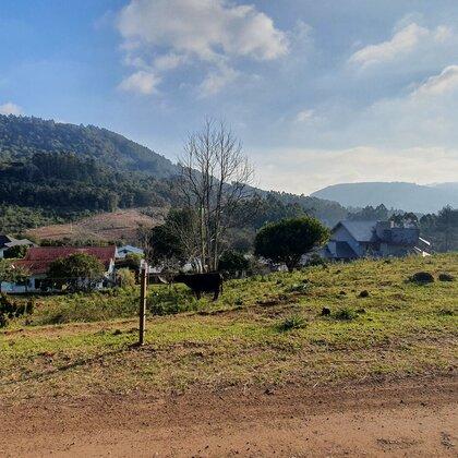 Terreno em declive e arborizado em Picada Café, na Serra Gaúcha