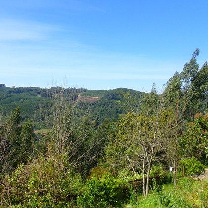 Sítio com duas casas em Nova Petrópolis na serra gaúcha