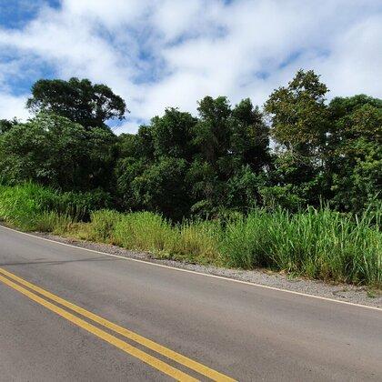 Área de terras para investimento em Nova Petrópolis na serra gaúcha