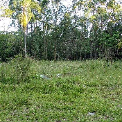 Terreno com área de 693,94 m² localizado ás margens da BR 116, no Bairro Morro Bock, Município de Picada Café-RS.