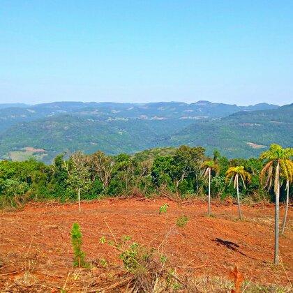Área de terras com vista panorâmica em Picada Café na serra gaúcha