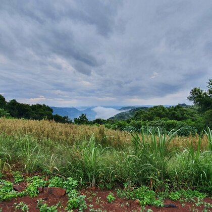 Área de terras com vista e açude em Linha Nova, na Serra Gaúcha