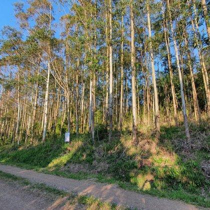 Área de terras com bela vista no alto de Nova Petrópolis na serra gaúcha