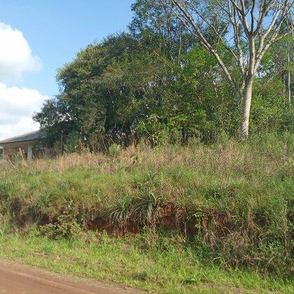 Amplo terreno com fácil acesso em Picada Café na serra gaúcha