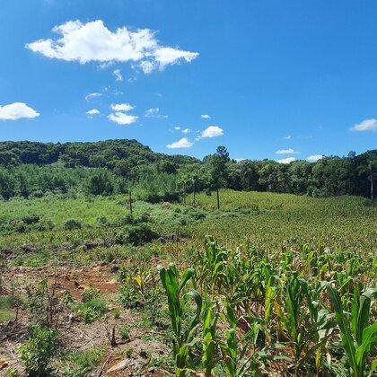 Área de terras magnífica em Nova Petrópolis na serra gaúcha