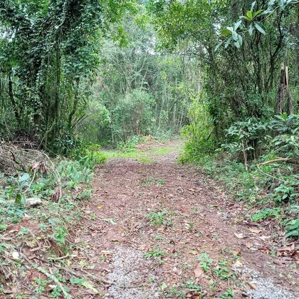 Área de terras próxima do Ninho das Águias em Nova Petrópolis-RS