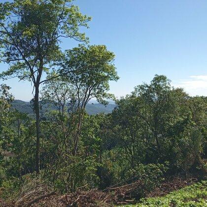 Área de terras com vista em Linha Nova na Serra Gaúcha