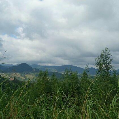 Área de terras com vista e riacho em Linha Nova na Serra Gaúcha