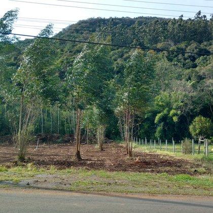 Terreno com área de 597,60 m², situado no bairro Kaffee Eck, município de Picada Café-RS