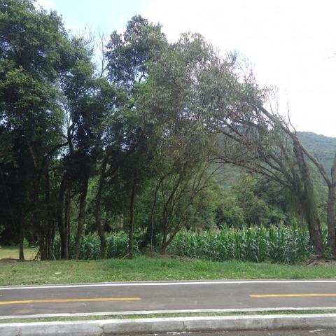 Terreno amplo com área de 841,05 m² e frente para ciclovia, localizado no bairro Centro, município de Picada Café-RS.