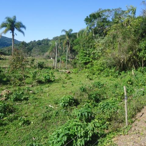 Área de terras para moradia em Picada Café na serra gaúcha