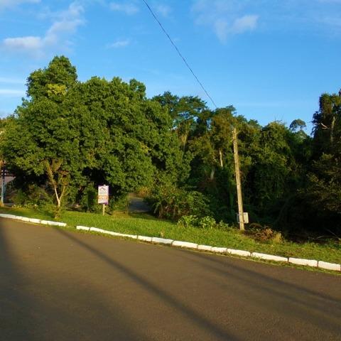 Terreno situado no bairro Bela Vista cidade de Picada Café, RS.